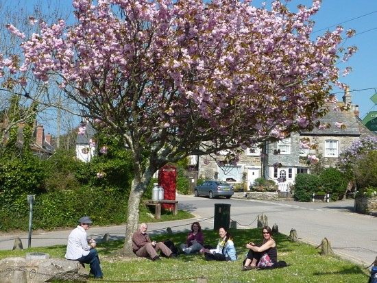 Under the blossom of a cherry tree
